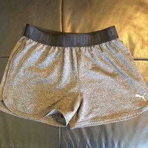 Puma shorts medium